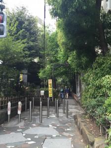 新宿遊歩道公園_四季の路01